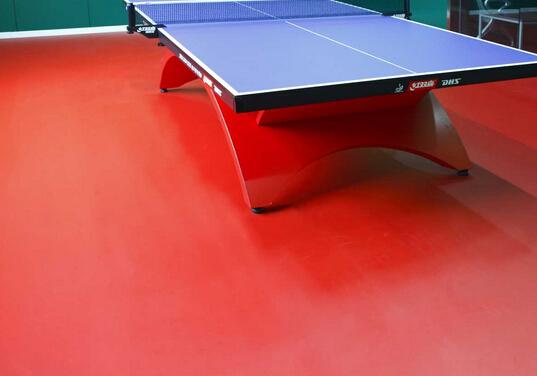 室内<em style='color:red'>乒乓球桌</em>图片