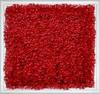 米兰<em style='color:red'>仿真植物</em>墙图片