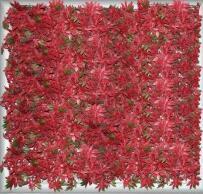 红枫叶<em style='color:red'>仿真植物</em>图片
