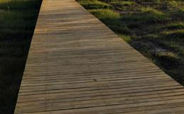 砂基生态滤水栈道图片