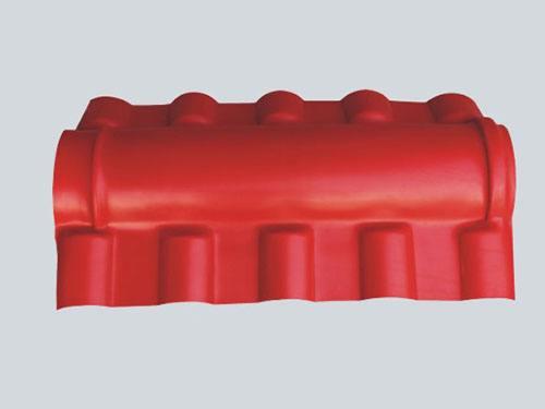 <em style='color:red'>正脊</em>全封圖片