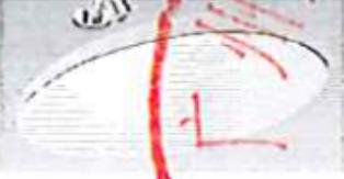 椭圆形<em style='color:red'>台下台盆</em>图片