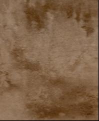 内墙砖图片