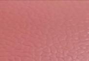 高性能运动<em style='color:red'>地胶</em>图片